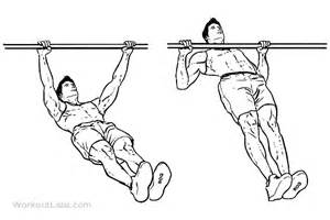 Inverted rows reverse pull ups workoutlabs