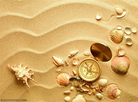 shell wallpaper download wallpaper compass shells shell sand free