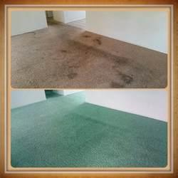 Floor And Decor Roswell Ga Carpet Dyeing Carpet Dye Tech Atlanta Ga Carpet