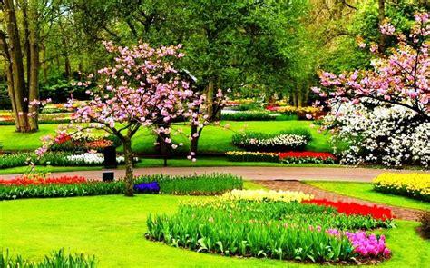gambar bunga indah terbaik  gambar pedia