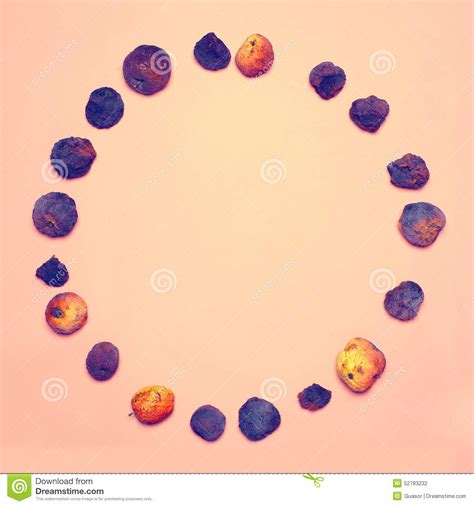 design concept group creative abstract design concept group dried fruits
