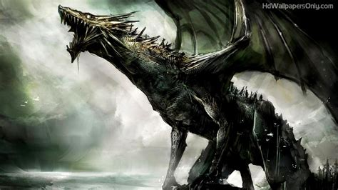 dark dragon wallpaper widescreen dragon wallpapers 4usky com