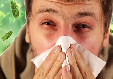 how cold is cold for a how common cold and flu are different from each other food n health