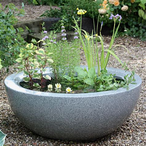garden water containers how can i make a mini pond in a pot waterside nursery