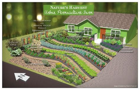 design of nature s harvest permaculture farm permaculture