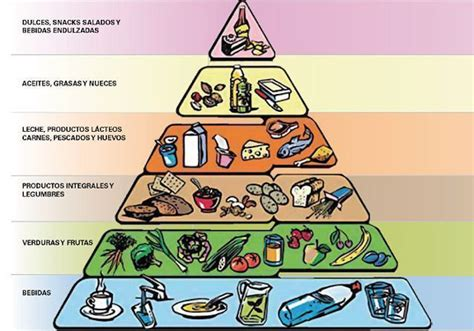 piramide de alimentos pir 225 mide de los alimentos