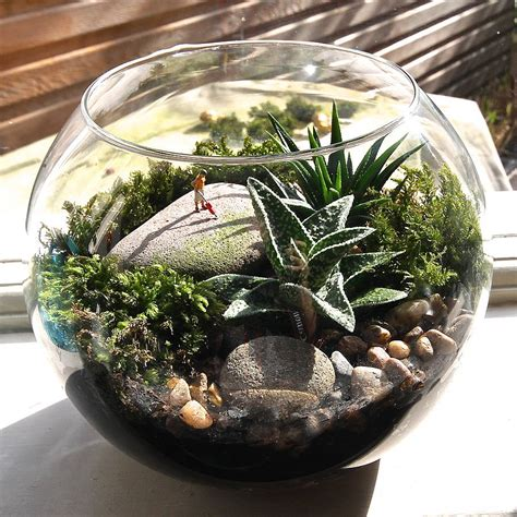 mini world terrarium kit hoovering by london garden trading notonthehighstreet com