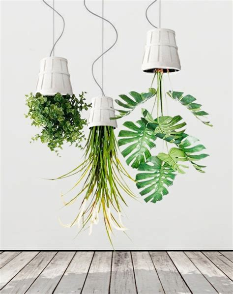 Hanging houseplants pictures of hanging baskets lovely in fresh design pedia