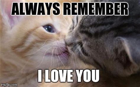 Cute Love Meme - pics for gt cute i love you memes