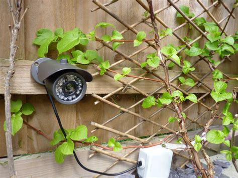 backyard wildlife camera 6 of the best gadgets to get the most from your garden