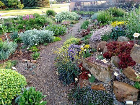 garden for untitled document www pplantpeddler