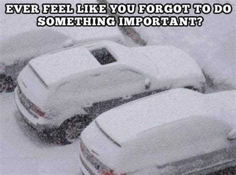 Funny Snow Meme - funniest snow memes ever