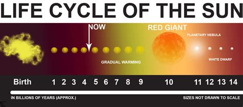 the life cycle of our sun file sun life f gif wikimedia commons