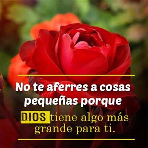 imagenes de rosas con frases cristianas amita morales google
