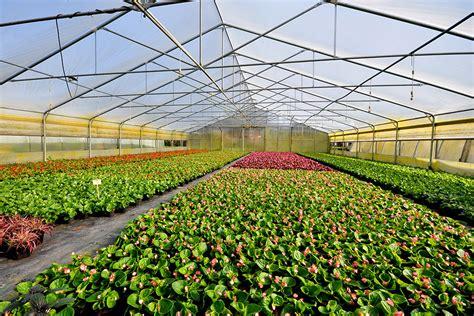 Garten Landschaftsbau Eberswalde by Baumschule Uelzen Pflanzen F 252 R Nassen Boden