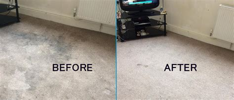 couch cleaning brisbane carpet cleaning brisbane 1800 284 036 steam carpet cleaners