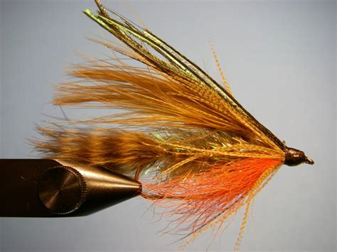 flight pattern of house flies ted s brook trout current works guide service