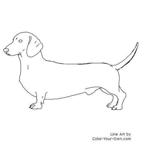 Dachshund Coloring Pages dachshund coloring page