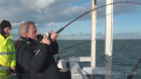 charter boat fishing poole boat fishing out of poole on rocket fishing tails