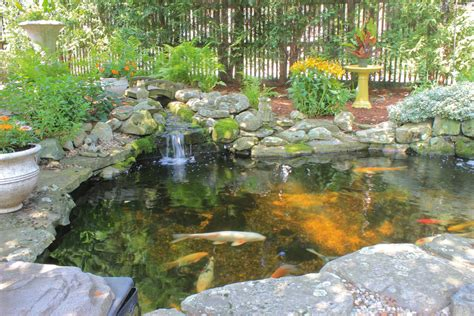 pictures of fish ponds in backyards backyard koi ponds and water gardens are a growing trend