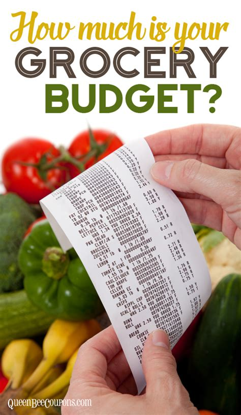 monthly grocery budget    usda