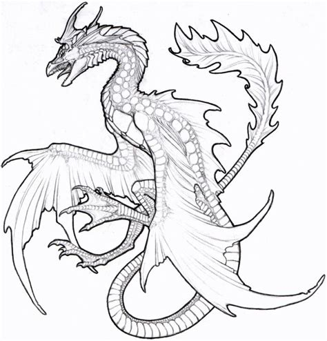 sea dragons coloring pages dragon coloring adult colouring dragons lizards snakes