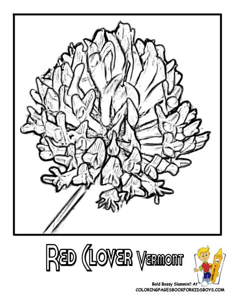 Free Coloring Pages Of Washington State Flower Washington State Coloring Pages