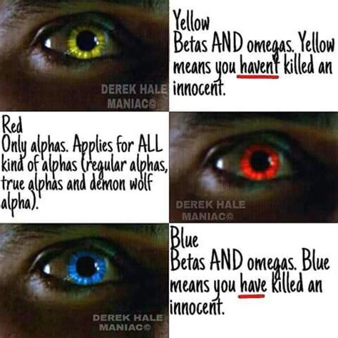 wolf eye color description of wolf eye colors teenwolf everything