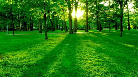 Landscape Synonym List Of Synonyms And Antonyms Of The Word Nature