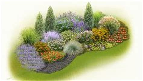 plants that don t need water 1000 images about plantas que no necesitan mucha agua on