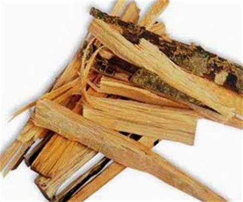 Kayu Ular Uh Mengontrol Gula Darah herbal kayu ular daun pembesar