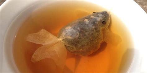 Teh Celup Villa teh celup ini dapat berubah jadi ikan ketika masuk air merdeka