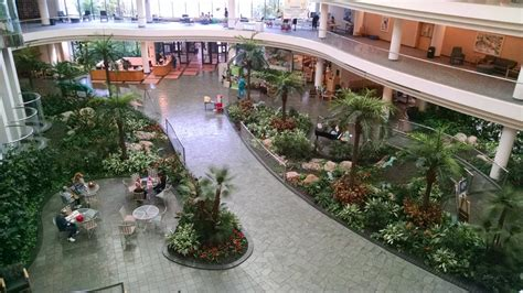 Garden Center Fort Myers The Atrium At Healthpark Yelp