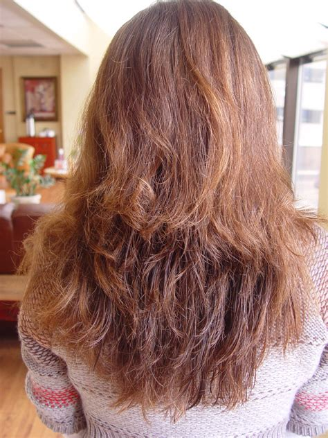 can y9u get a brazilian blowout with short hair diary of a brazilian blowout studio 33 salon spa
