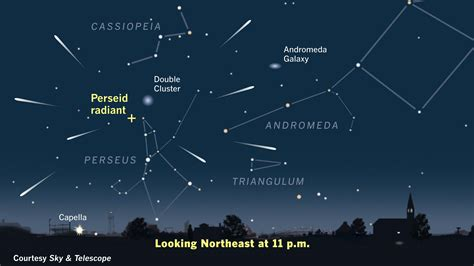 perseids peak where to seattle astronomy