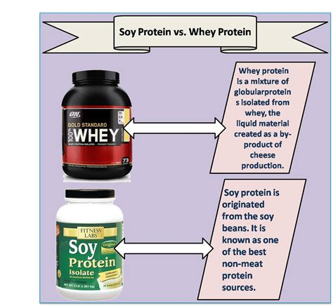 best soy protein soy protein vs whey protein khelmart org it s all