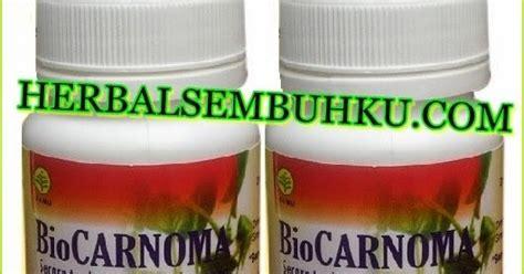 Jual Bibit Buah Tin Di Sidoarjo biocarnoma obat herbal kanker kista mioma surabaya