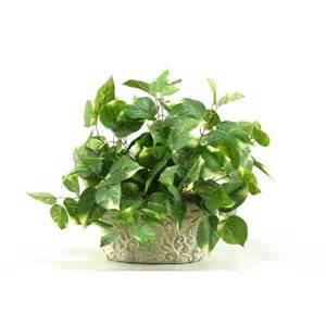 best desk plants d w silks pothos desk top plant in pot reviews wayfair