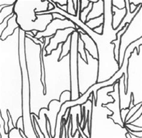 rainforest canopy coloring page canopy tree coloring book coloring pages