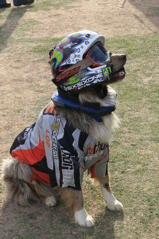 awesome motocross helmets 106 best awesome motorcycle images on