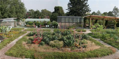 imagenes de jardines botanicos en mexico ciudad verde conoce los jardines bot 225 nicos que puedes
