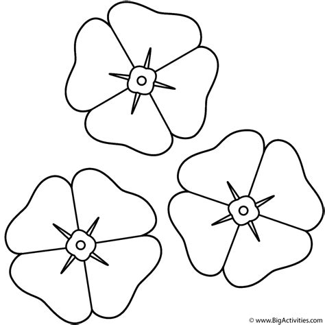 poppy template to colour poppies coloring page remembrance day