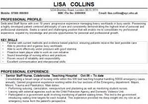 cv skills exles