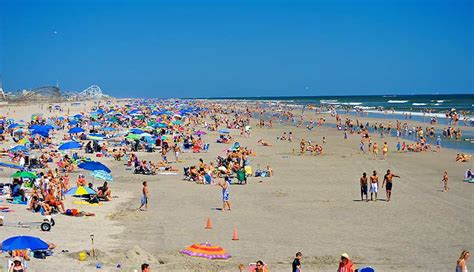 friendly beaches nj home welcome to the paradise oceanfront resort