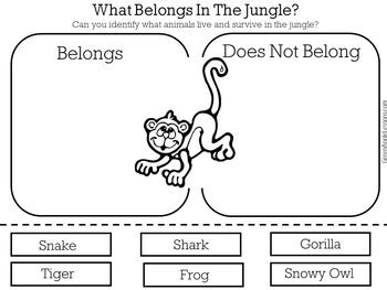 jungle worksheet jungle activity jungle printable by