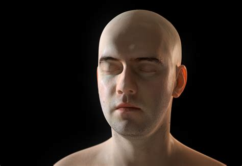 continuum human head