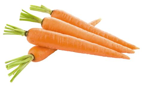 pictures of carrots carrot png image free