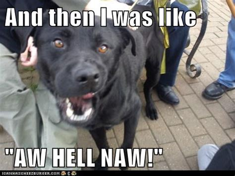 Hell Naw Meme - aw hell naw meme