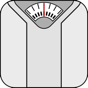 bathroom scales in stones and pounds convert stones st pounds lb kilograms kg calculator