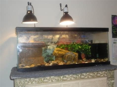 uvb light for turtles turtle tank lighting do you need a uvb light for turtles